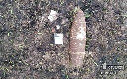 Во время прогулок жители Криворожского района нашли боеприпасы