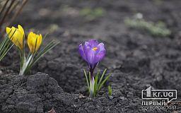 Погода в Кривом Роге 14 марта и гороскоп