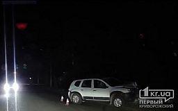 ДТП в Кривом Роге: Renault Duster врезался в столб