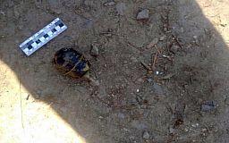 В Кривом Роге возле жилых домов обнаружили гранату