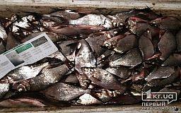 Десятки килограммов рыбы в Кривом Роге на водохранилище могли выловить незаконно, - заявление