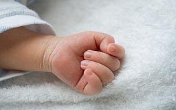 В Кривом Роге ежедневно рождается по 13 малышей