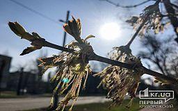 Прогноз погоды в Кривом Роге на 30 марта
