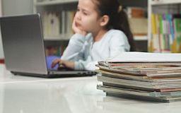 Как криворожанам заинтересовать ребенка учиться дома дистанционно, - советы психолога