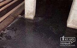 Можно запускать карасей: подвал одного из домов в Кривом Роге затопило нечистотами