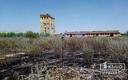 В Криворожском районе спасатели тушили пылающий сухостой