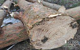 Двоих криворожан, которые спиливали деревья для обогрева, осудили