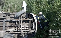 Пострадали 15 человек: маршрутка перевернулась на трассе в Днепропетровской области