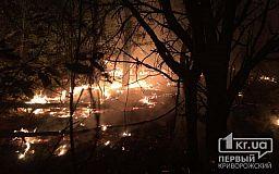 7 часов спасатели тушили масштабный пожар в лесу возле Кривого Рога