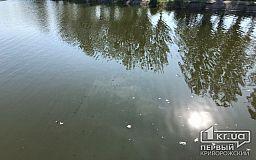 В Кривом Роге скончался трехлетний ребенок, который упал в реку