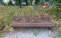 Криворожский парк, в котором недавно закончился ремонт, зарос бурьянами