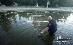 В Кривом Роге пожарные спасли собаку, которая упала в фонтан