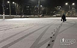 Во время снегопада на дорогах Кривого Рога работало более 20 единиц спецтехники