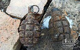 Снаряды и гранаты обнаружены в двух селах Криворожского района