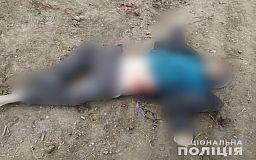 Фото 21+ Личность погибшего в ДТП на Криворожской трассе устанавливают полицейские