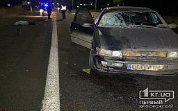 Недалеко от Кривого Рога насмерть сбит пешеход