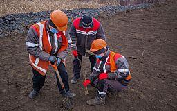 Северный ГОК продолжает озеленение хвостохранилища