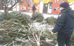За незаконную продажу елок в Кривом Роге оштрафовали 26 человек