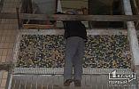 В Кривом Роге спасатели помогли пенсионеру, который свисал с балкона и просил о помощи