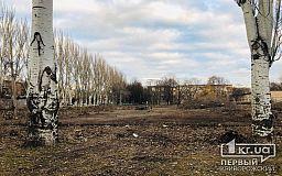 Недалеко от главного корпуса педуниверситета в Кривом Роге срубили зеленые насаждения