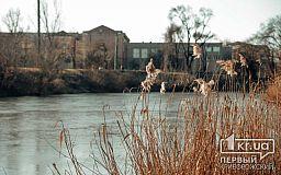 Качество воды в криворожской реке Саксагань не соответствует норме, - чиновники