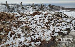 Неизвестные выгрузили из фуры туши мертвых птиц возле жилых домов в Криворожском районе