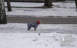 Какой будет погода в Кривом Роге 9 февраля и что сулит гороскоп