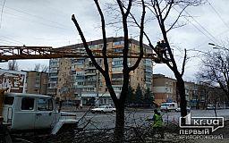 Над дорогой в Кривом Роге  коммунальщики обрезали сухие ветки деревьев