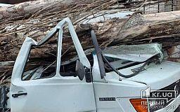 В Кривом Роге тополь упал на Mercedes