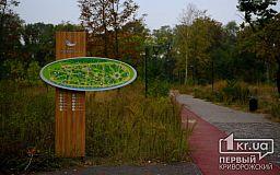 Бурьян, поломанные урны и отсутствие освещения: как выглядит сегодня реконструированный парк Гданцевский в Кривом Роге (видео)