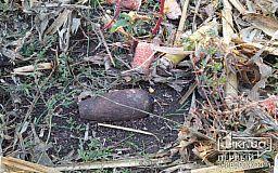 Спасатели обезвредили в Криворожском районе мину