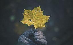 Как выбрать перчатки: ТОП-5 советов «Первого Криворожского»