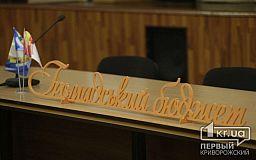 Общественный бюджет 2021: в Кривом Роге начался прием конкурсных предложений