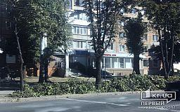 В центре Кривого Рога коммунальщики обрезают деревья