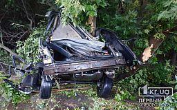 Два человека погибли: в Кривом Роге авто влетело в дерево