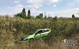 В Кривом Роге в результате ДТП одно авто слетело в камыши
