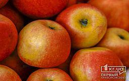 История и традиции Яблочного Спаса