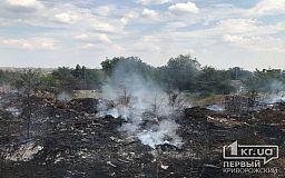 Масштабный пожар в Кривом Роге: огонь перебросился с полыхающей травы на пристройку (обновлено фото)