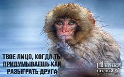 1 апреля: подборка смешных картинок от редакции «Первого Криворожского»