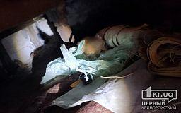 В Днепре пожарные спасли котят, которые не могли выбраться из подвала