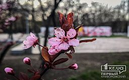 Погода в Кривом Роге 3 апреля и гороскоп