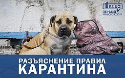 Прогулки с детьми, животными и другие правила карантина, - Кабмин