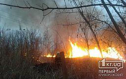 За выходные в Кривом Роге 9 раз горел сухостой и мусор