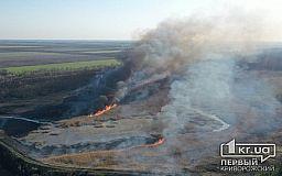 В Украине увеличили штрафы за сжигание травы и загрязнение атмосферного воздуха