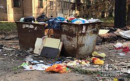 В Кривом Роге дезсредствами обработали сотни мусорников