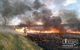 Спасатели тушили масштабный пожар на открытой территории в Широковском районе