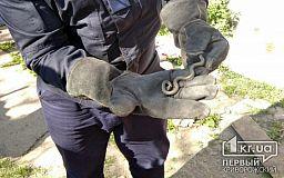 Пожарные поймали змею во дворе частного дома в Широковском районе