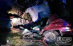 Авто слетело в кювет: люди пострадали в результате ДТП под Кривым Рогом