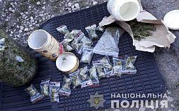 Почти 10 килограмм конопли изъяли правоохранители у криворожанина