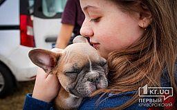 ТОП-5 причин от «Первого Криворожского»: почему стоит завести собаку